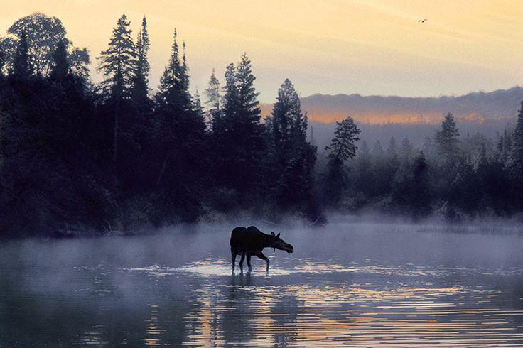 Luontokuvia Suomesta