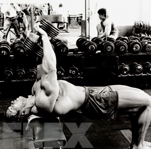 A Forgotten Gem Arnold Schwarzenegger Arnold Schwarzenegger Muscle Arnold Chest Workout