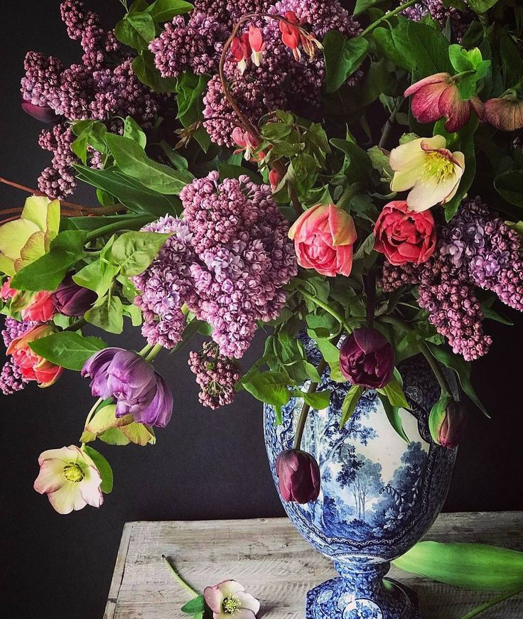 """4,358 Likes, 105 Comments - @poshpedlar on Instagram: """". . 'Flirting is a woman's trade, one must keep in practice.' (Charlotte Brontë, b 21 April 1816) .…"""""""