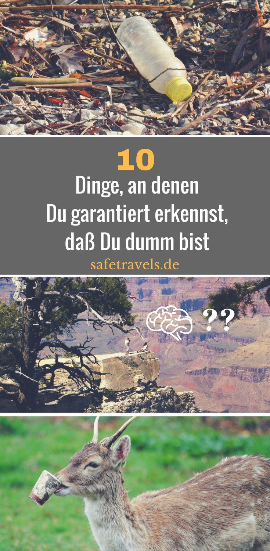 10 Dinge, an denen Du garantiert erkennst, daß Du dumm bist