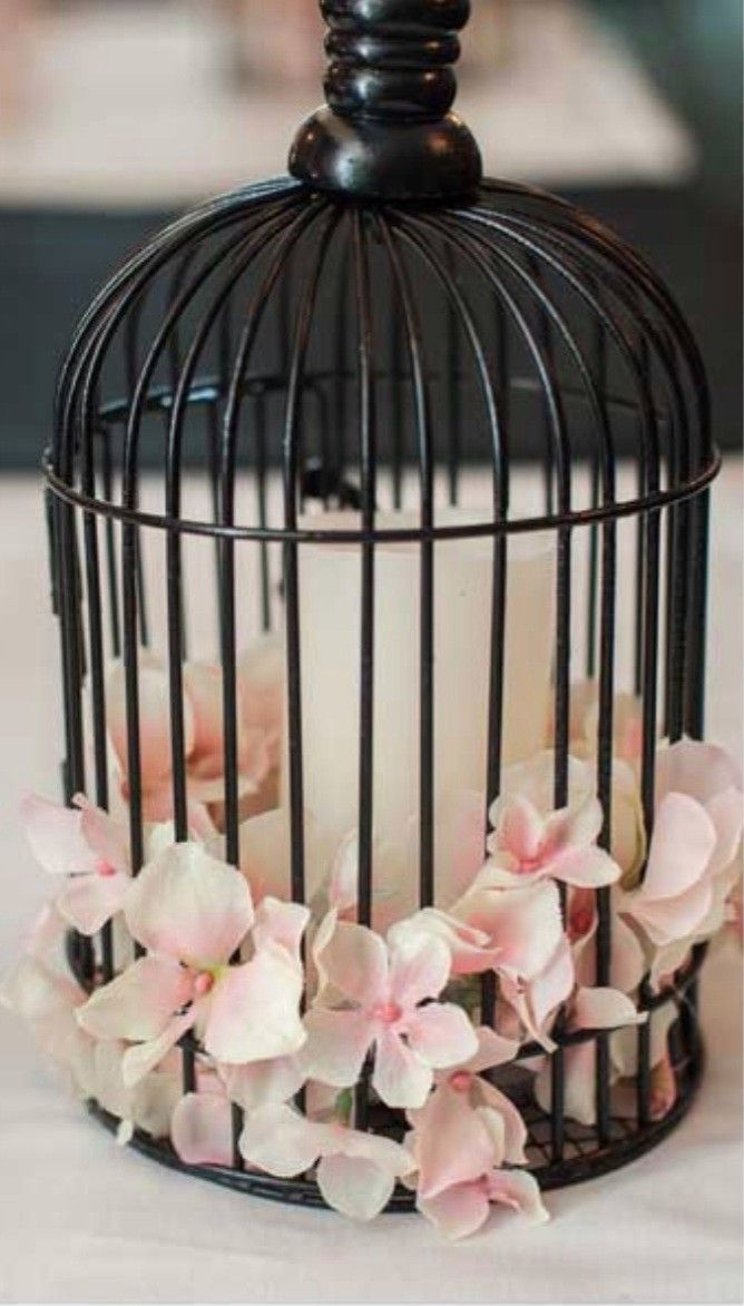 birdcage wedding decorations 1000 images about decorative bird cages on 1727