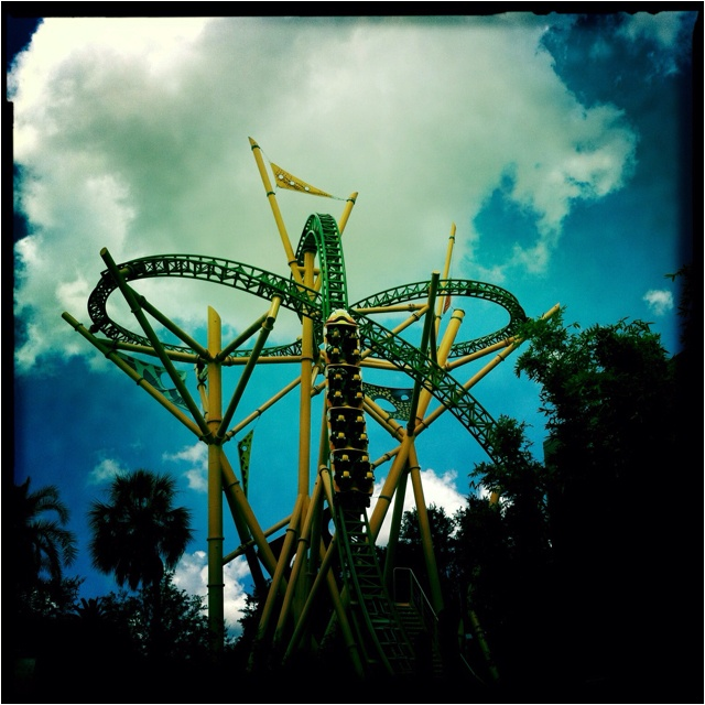 547 Best Images About Roller Coaster Love On Pinterest Parks Roller Coasters And Crazy