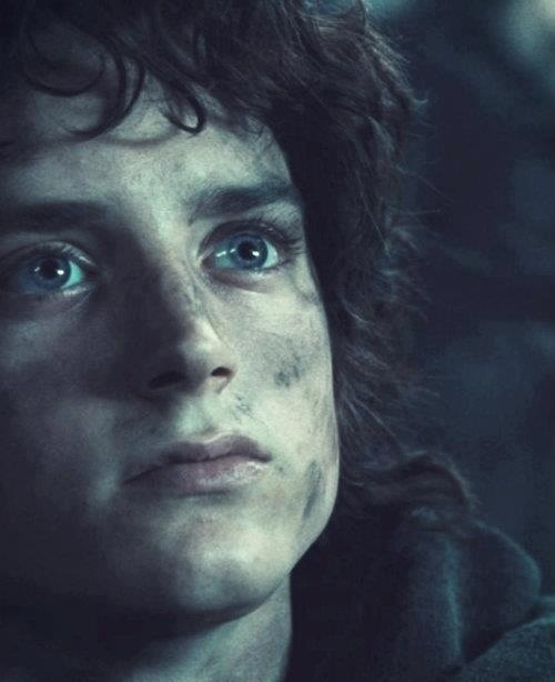 Elijah Wood as Frodo. His performance was grossly underappreciated, imho. He did an excellent, enourmous job at a very young age, even though casting him was critized because Frodo was in his 50s in the book. I never personally minded that much, I think his youth symbolised his initial innocence.