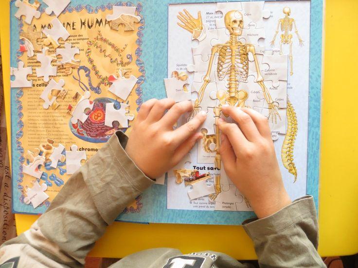 physiologie du systeme nerveux humane pdf free