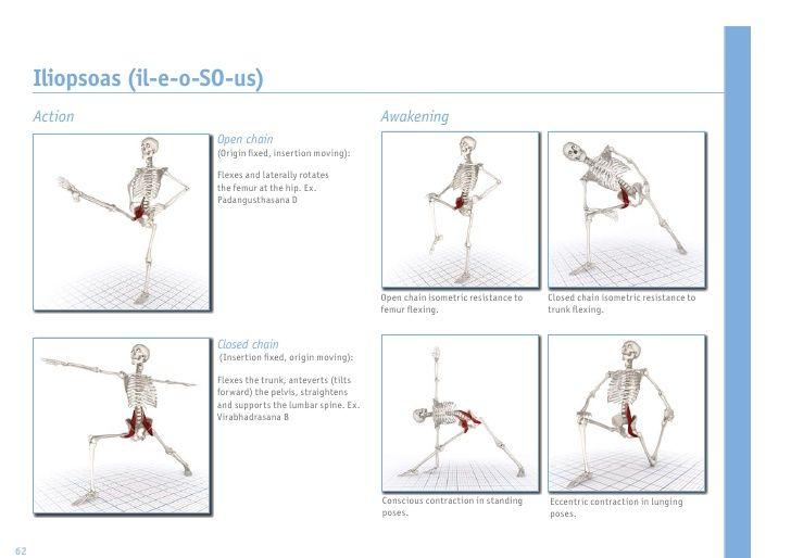 leg stretching exercises pdf - photo #11