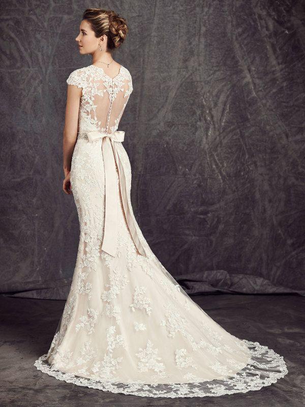 V Neck Cap Sleeve Sheath Lace Wedding Dress with Crystal Ribbon _1
