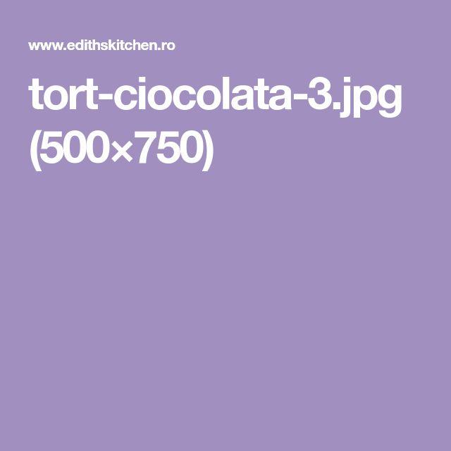 tort-ciocolata-3.jpg (500×750)
