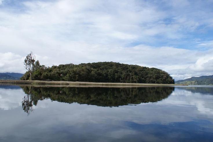 Santuario de Flora Isla de La Corota (Nariño), Colombia.