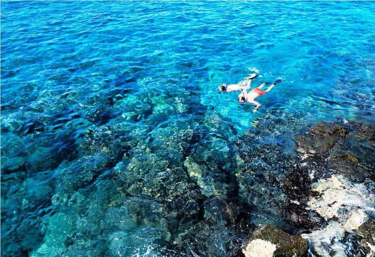 The best snorkeling spots in oahu hawaii snorkeling i 39 d for Fishing spots oahu