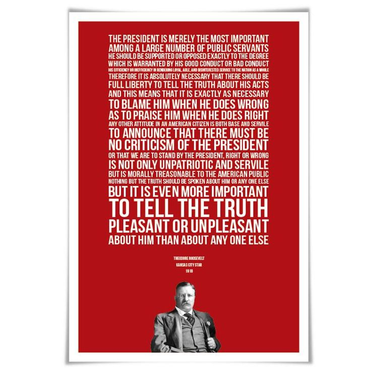 Theodore Roosevelt Presidential Criticism Essay. 60 Colours/4 Sizes. American History. Patriotism Quote. Loyalty US Treason