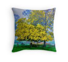 Golden Acacia Wattle Tree in Full Bloom Throw Pillow
