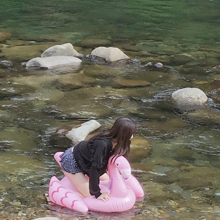 毎年恒例家族でキャンプ中です🏕  今年も福井のキャンプ場です😊😊😊  行き道は、大好きな郡上八幡に寄ってぶらぶら🍦    テントたててから小さいフラミンゴで川下りした 笑笑  お姉ちゃん落ちてベタベタになってた😂  (質問着てたので、、水着はもうなんでもよかったのでアマゾンプライムで買った激安1590円にリボンつけました👙笑笑)    川下りみてぱぱとままひたすら笑ってた😂😂🙀🙀 明日は雨降るみたいだから、  テント畳んだりするのが大変。🙀🙀🙀 いい空気吸って、まったりして、、元気が出ます^^👨👩👧👦#郡上八幡#福井#九頭龍#オートキャンプ#年に一度の#家族キャンプ#キャンプいつも雨