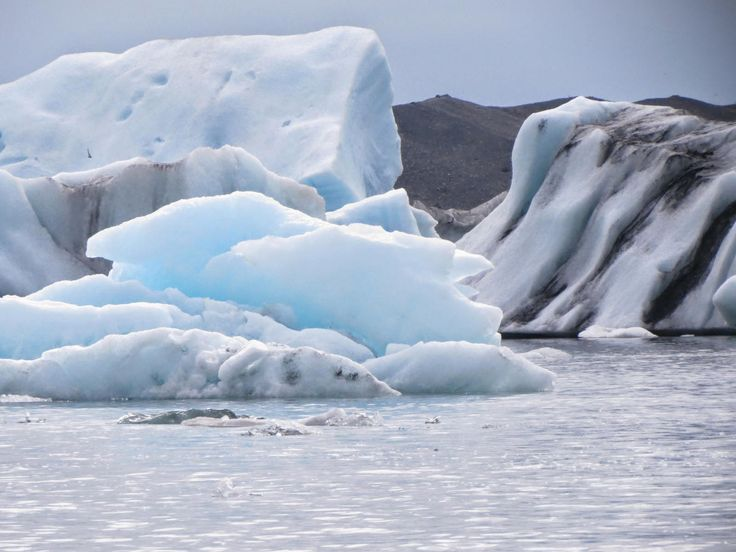 Painting My World: Iceland: Through the Eye's of an Artist part 12 Icebergs, Glaciers and Arctic Terns