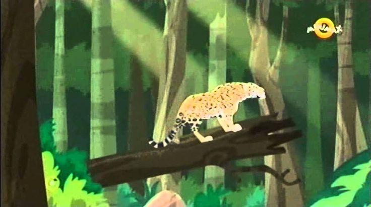 Állati küldetés - s01e09 Árnyék, a fekete jaguár