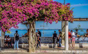 Miradouro de Santa Luzia. Things to do in Alfama District - Lisbon Old Town.