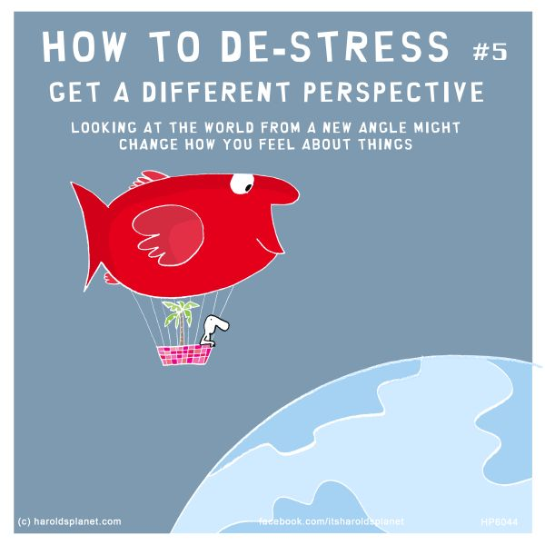 HOW TO DE-STRESS #5: GET A DIFFERENT PERSPECTIVE - LOOKING AT THE WORLD FROM A NEW ANGLE MIGHT CHANGE HOW YOU FEEL ABOUT THINGS