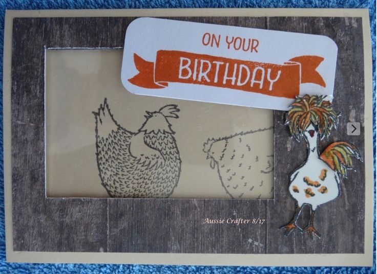 Chook Chook has escaped again! • AB's B/day 8/17