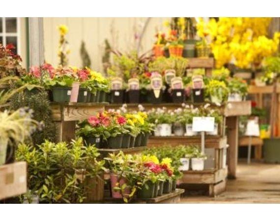 Flower Shop Ideas | eHow.com