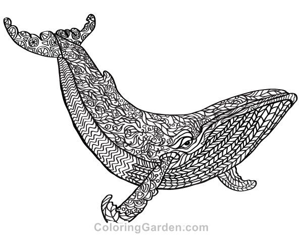 92 best Adult Coloring Pages at ColoringGardencom images on