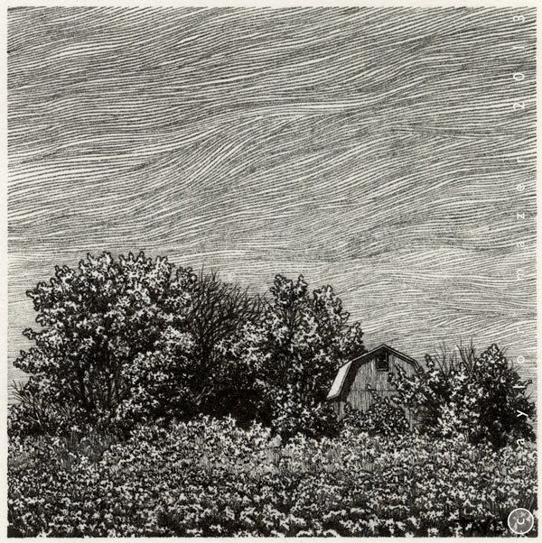"""""""Brush,"""" 4 x 4 in, Pen and Ink, 2013 by Taylor Mazer, via Behance"""