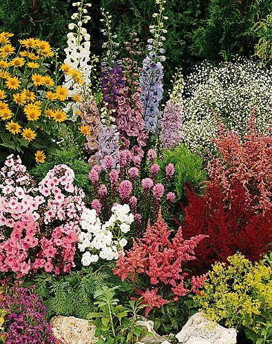 perennial garden - varying heights