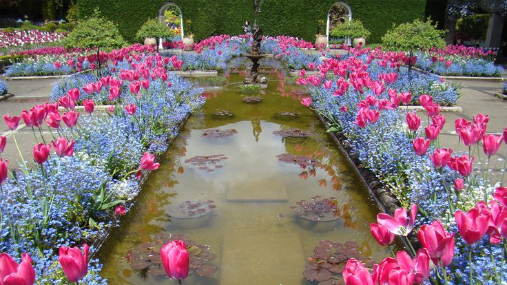 exsotis-Butchart-Gardens-is-a-garden-flower-tourism,-colombia