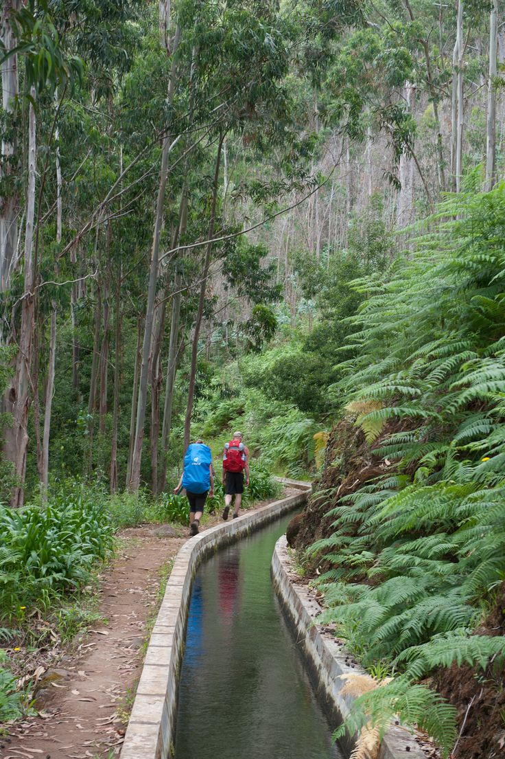 Hiking along this well maintained  levada on the flower island Madeira - Portugal
