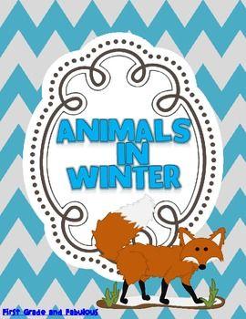 Animals in Winter--A Mini Unit - First Grade and Fabulous - TeachersPayTeachers.com