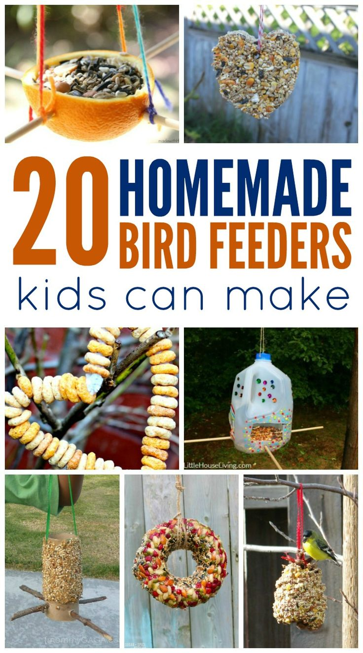 Invite birds into your yard with these Homemade Bird Feeders Kids Can Make! A fun and educational activity the whole family will enjoy!