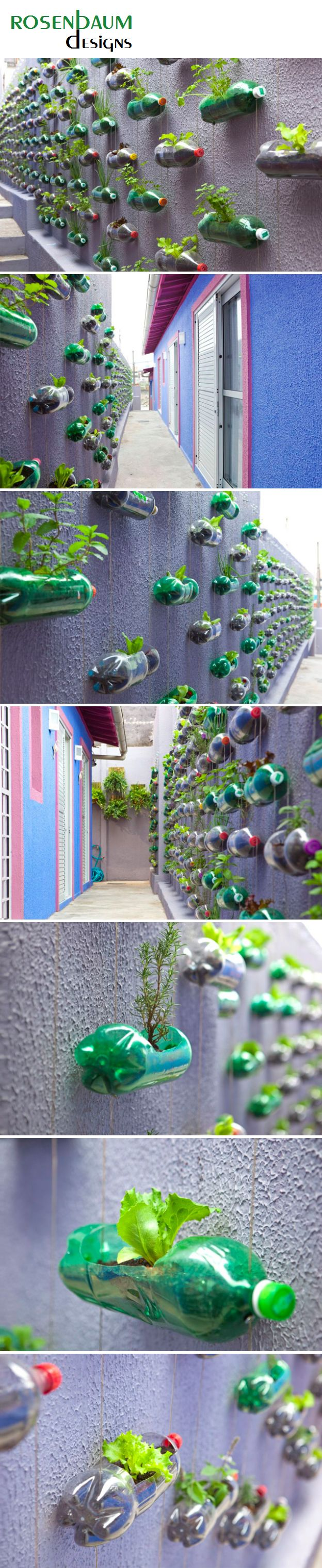 Impressive looking vertical bottle garden