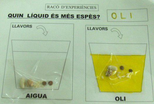 Fitxa posterior a experimentar la densitat dels líquids (P5).