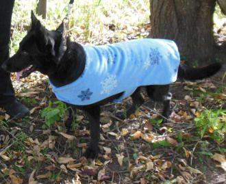 Fleece Dog Coat Size large pdf Pattern   YouCanMakeThis.com