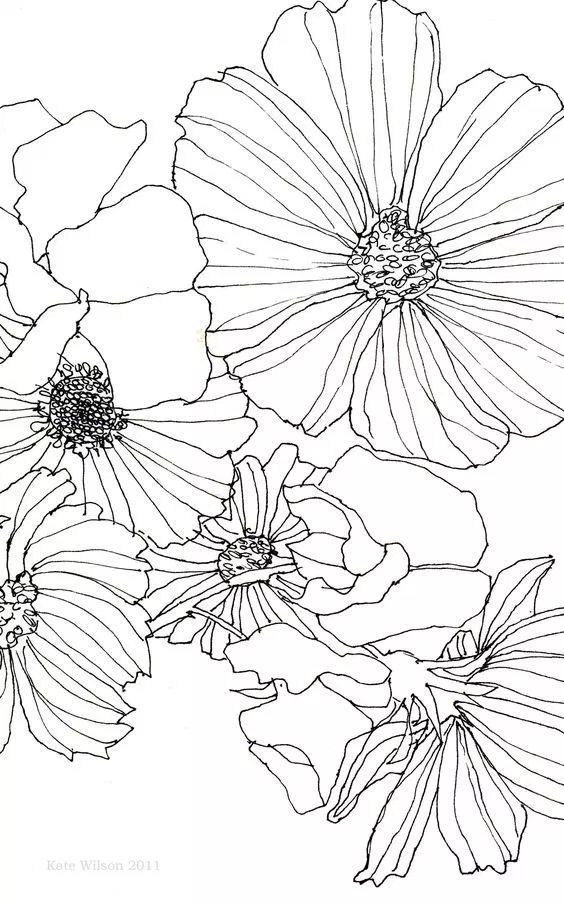 30 Ways to Draw Flowers – Shihori Obata: Abstract Artist & Creative Blogger