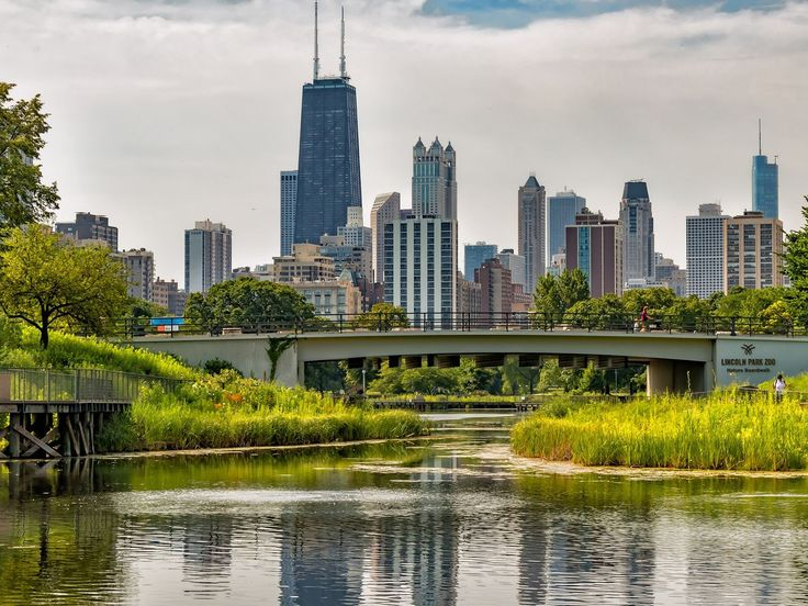 Lincoln Park Restaurants: Chicago DiningGuide