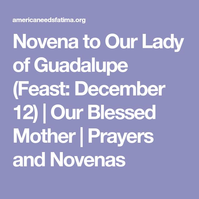Novena to Our Lady of Guadalupe (Feast: December 12) | Our Blessed Mother | Prayers and Novenas