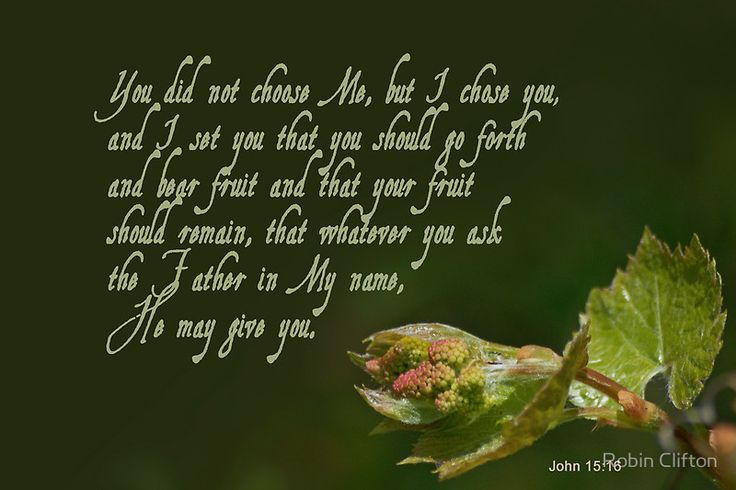 https://images.search.yahoo.com/search/images?p=john 15:16 images