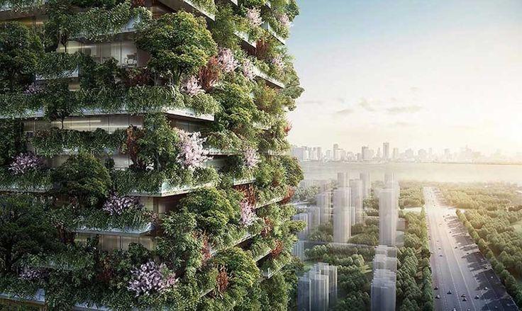 La première forêt verticale va voir le jour en Asie #Inspiration