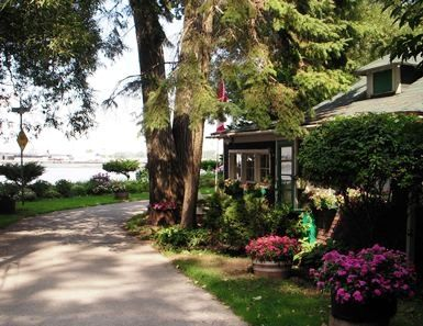 algonquin island cottages - Google Search
