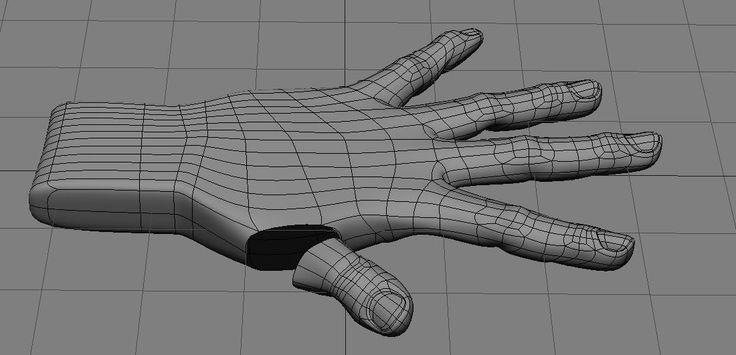 human hand topology 1-6