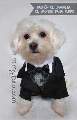 Mimi y Tara | Patrones de ropa para perros: Patrón de chaqueta de smoking para perro