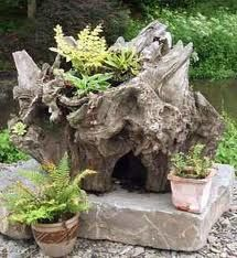 With tree root home pinterest trees tree roots and Make your own toad house