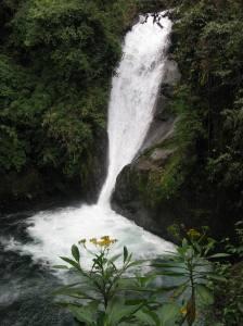 Cloudbridge Nature Reserve in Costa Rica.