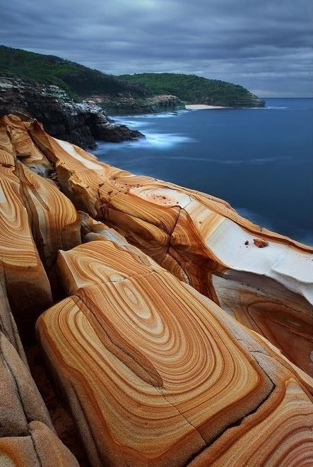 Liesegang Rings at Bouddi National Park, New South Wales, Australia.