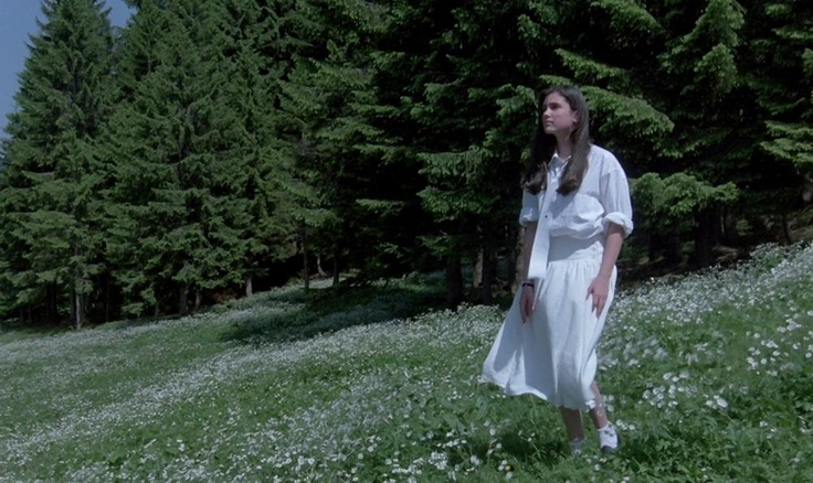 Dario Argento: Phenomena, Il Cinema Nel Sangue | MAD Museum