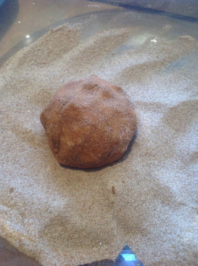 Snickerdoodle Muffins (Thermomix Method Included) « Mother Hubbard's Cupboard
