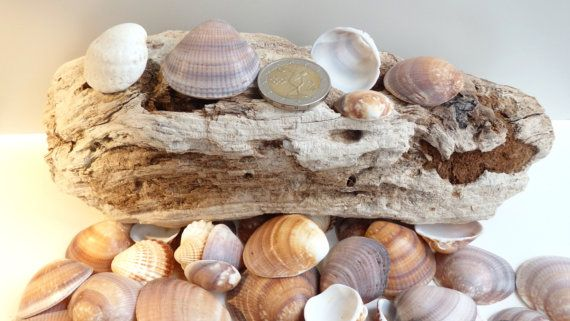Driftwoodpiece of Natural Artassortment with 30 by LeFuCycliste