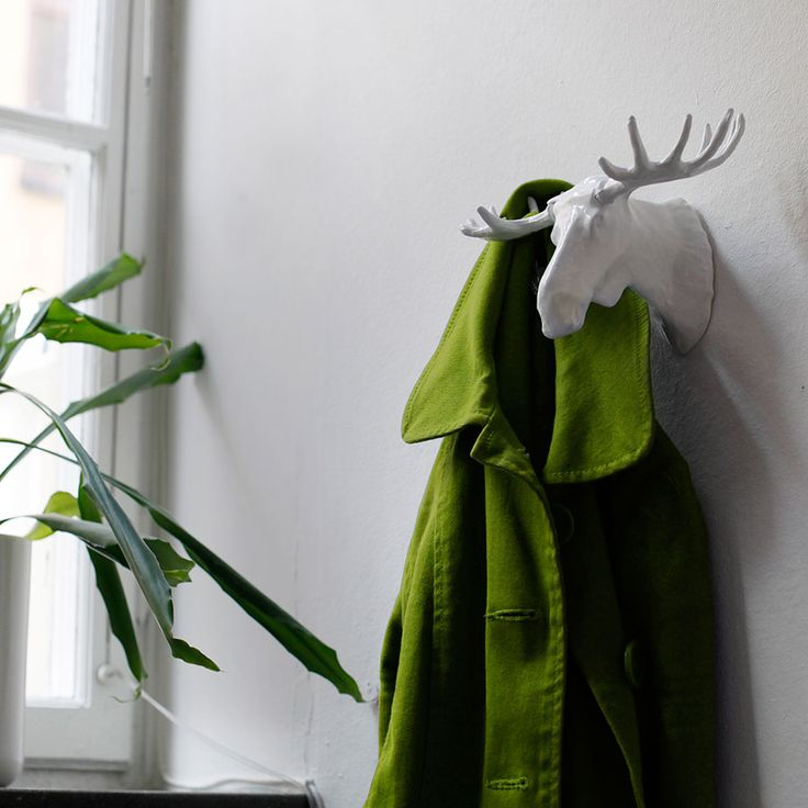 A coat hanging on the moosehead