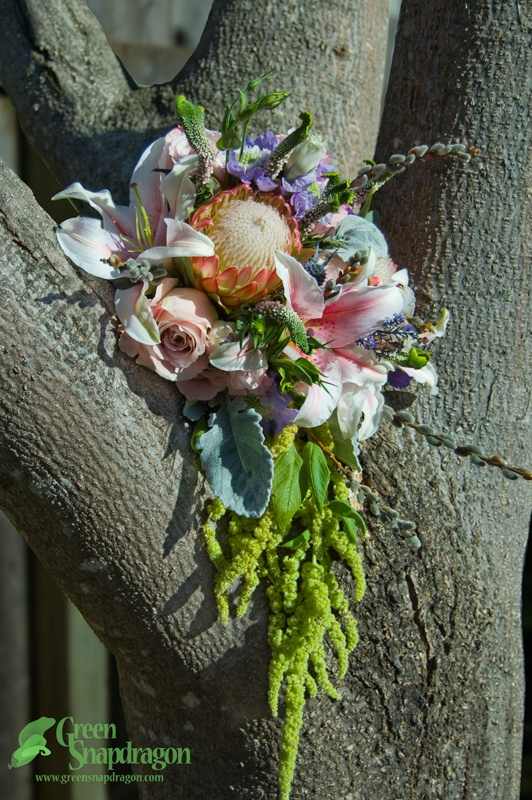 Cascade/teardrop bridal bouquet with protea, stargazer lilies, pink roses, dusty miller, veronica, pussy willows, lisianthus, scabiosa, anemone, sea thistle, and hanging amaranth.