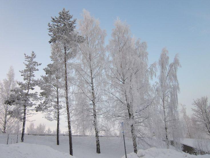 La neve in Finlandia