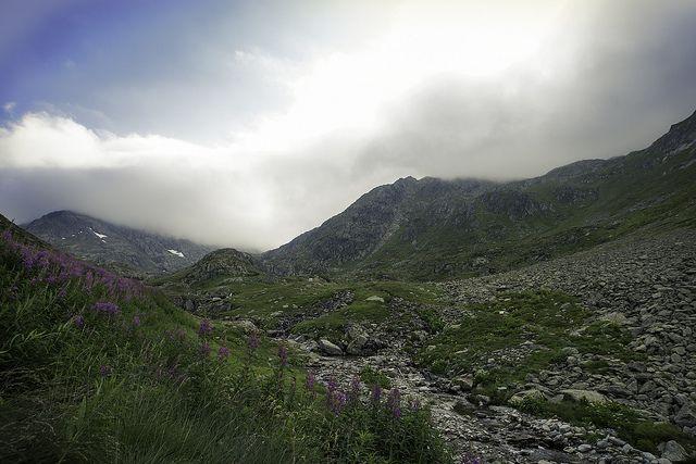 Gd St Bernard - Swiss Alps